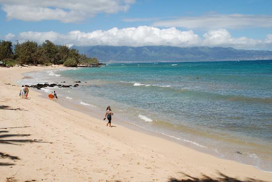 Beach at Paia Inn