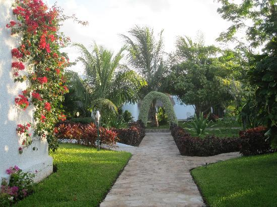 Amarte Hotel: The lovely gardens