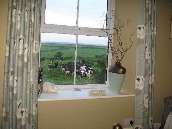 Kerris, UK: view from our room