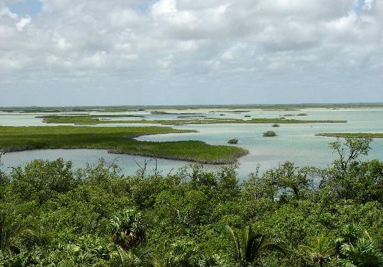 Sian Ka'an Biosphere Reserve: Sian kaan Lagoon