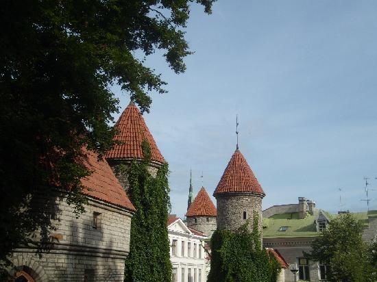 Dzingel: Towers in Tallinn