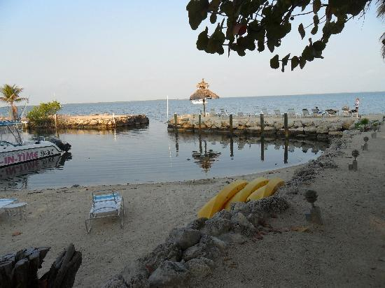 Amy Slate's Amoray Dive Resort: Beach with kayaks