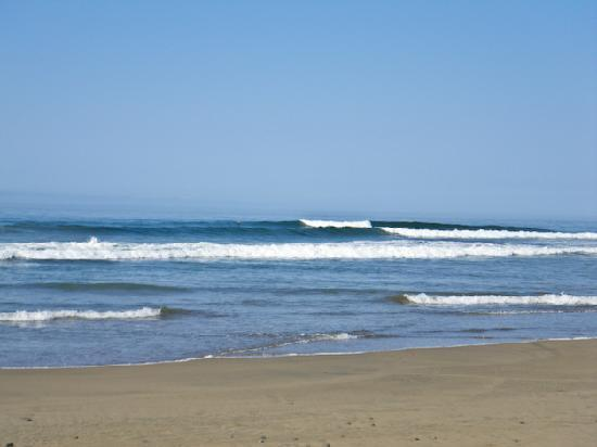 Casa Manzanillo: Surf sport with Adrian