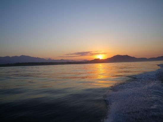 Casa Manzanillo B&B: Boat trip