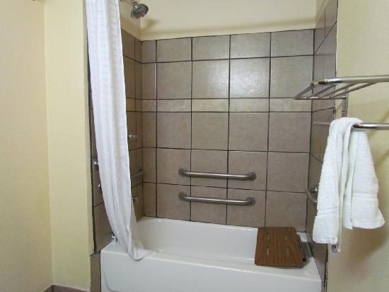 BEST WESTERN PLUS Kalamazoo Suites: My shower