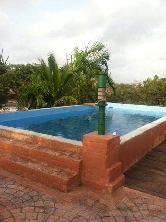 Cunucu Arubiano: pool