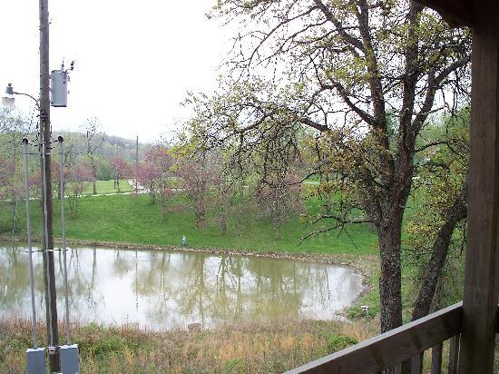 Mansfield Woods: View from Cabin 2 looking down on right side of pond.