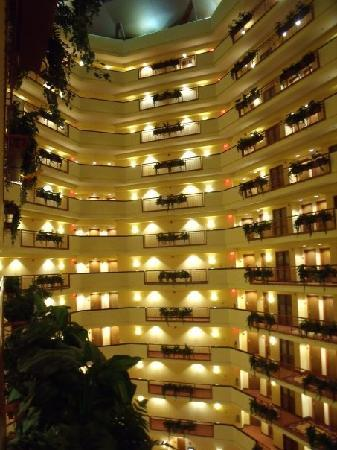 Embassy Suites by Hilton Dallas Frisco Hotel Convention Center & Spa: View