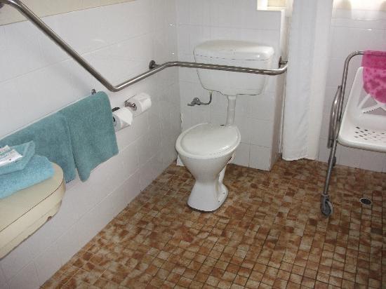 Tamar River Villas: accessible bathroom