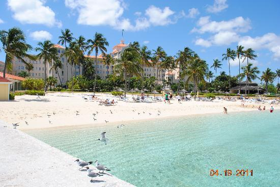 "British Colonial Hilton Nassau: The ""beach side"""