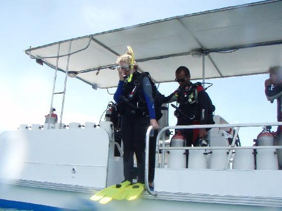 Rich Coast Diving: taking the plunge