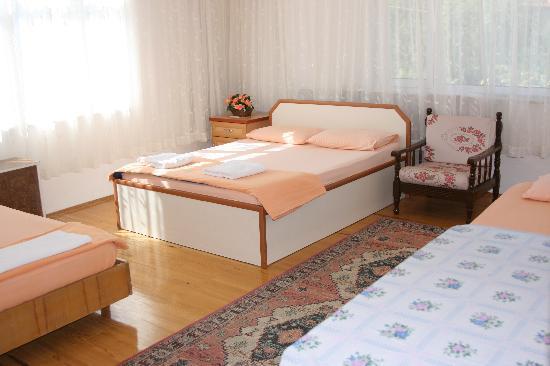 Sehsuvar Peace Pension : Quad/Family Room