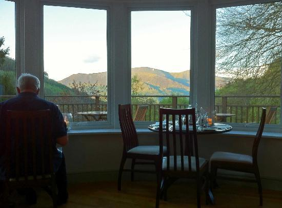 The Cottage in the Wood: View from the dining room