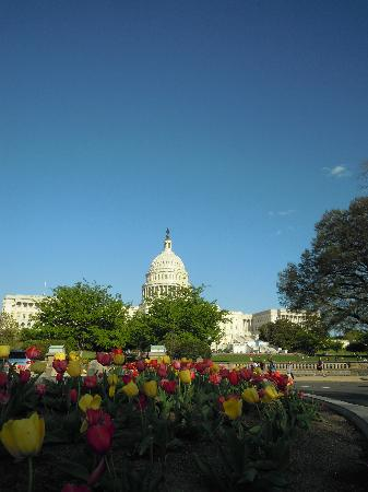 Washington: capitol hill