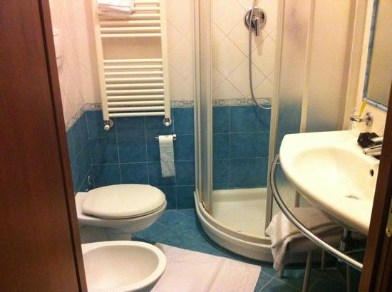 Terni Hotel : clean bathroom, functioning shower and blowdryer
