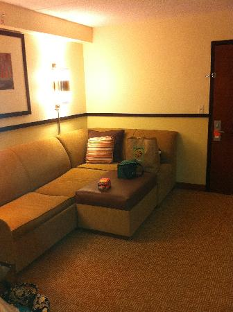 Hyatt Place Baltimore BWI Airport: Living Area