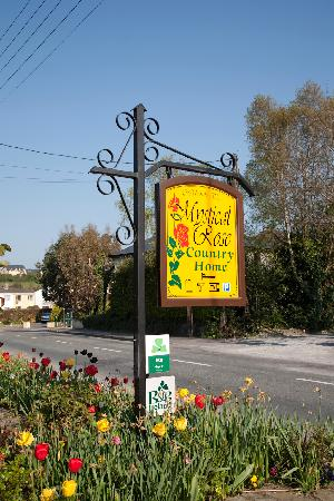 Mystical Rose Bed and Breakfast : B&B Sign