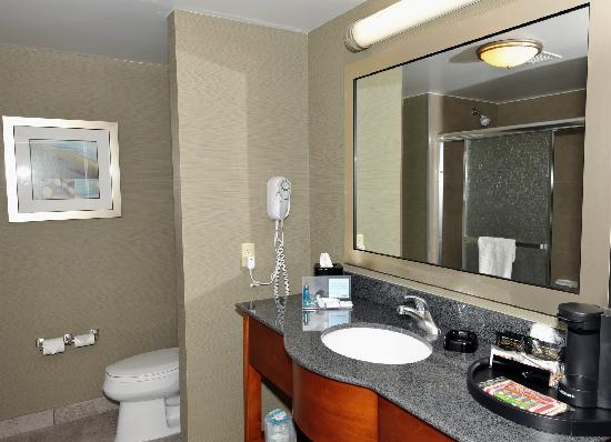 Hampton inn suites by hilton brantford ontario for Beautiful washrooms