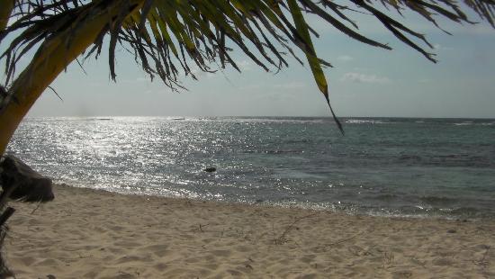 Bodden Town, Grand Cayman: The beach