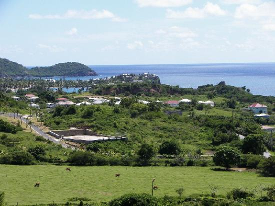 South Coast Ocean View Apartments: Views from the apartment, Curtain Bluff