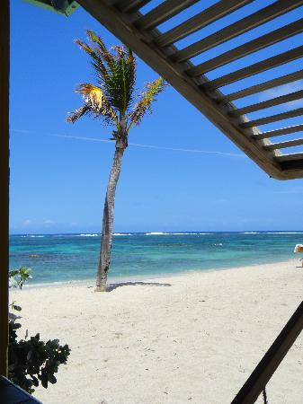 Nisbet Plantation Beach Club: View from our favorite table at lunch time
