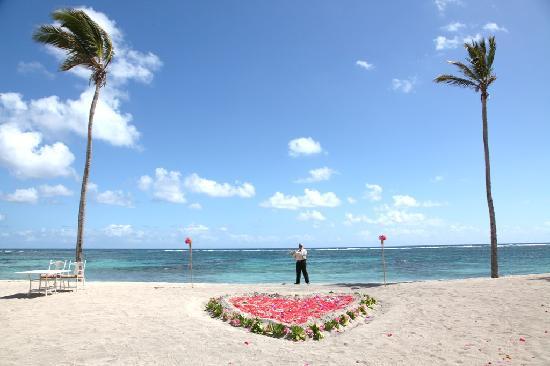 Nisbet Plantation Beach Club: The site of our wedding