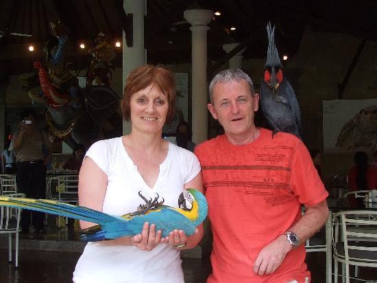 Risata Bali Resort & Spa: dead parrot  ?????? pretending