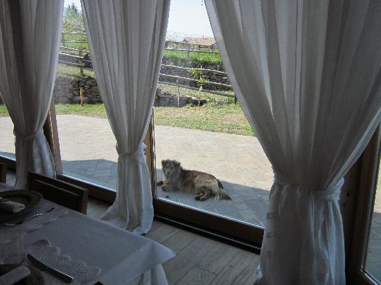 Baselga di Pine, Italië: La Berna