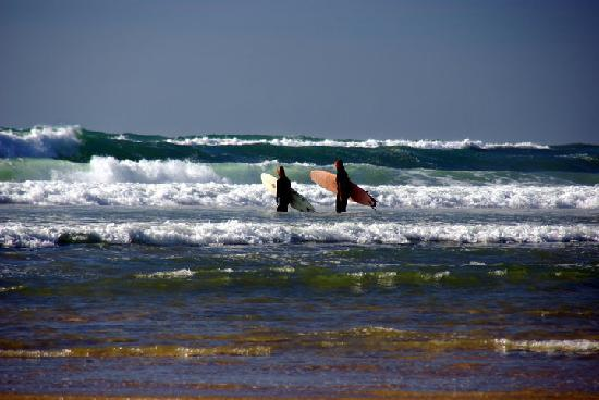 Aloha Surf Academy: Surf fun !