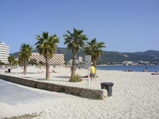 Hotel Seramar Comodoro Playa: beach by hotel