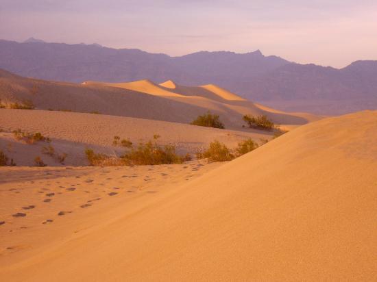 Stovepipe Wells Village Hotel: Le dune a qualche centinaio di metri