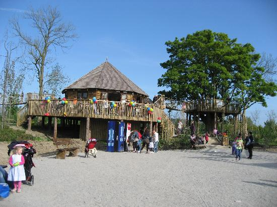 Tayto Park: The tea top and tree top park