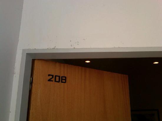 Apart Hotel Alvear: tela arañas y mugre arriba de la puerta del 4 estrellas
