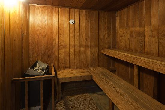 Holiday Inn Express Bishop: Dry Sauna