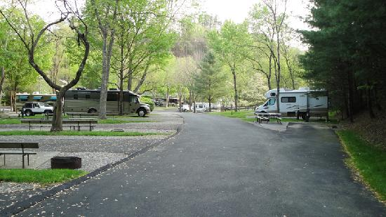 Twin Creek RV Resort: From the stream looking down the hill