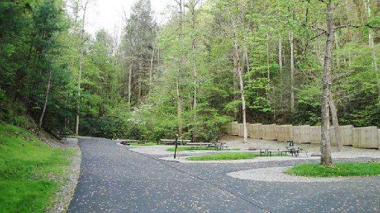 Twin Creek RV Resort: This would be my pick of parking places (#54)...Secluded and listening to the stream at my bedro