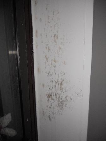 West 46th Street Apartment: More mold