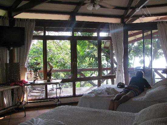 Tulemar Bungalows & Villas: Jungle views from the bedroom