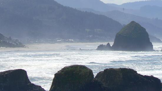 ‪ذا كنتري يارد: Cannon Beach from Ecola State Park‬