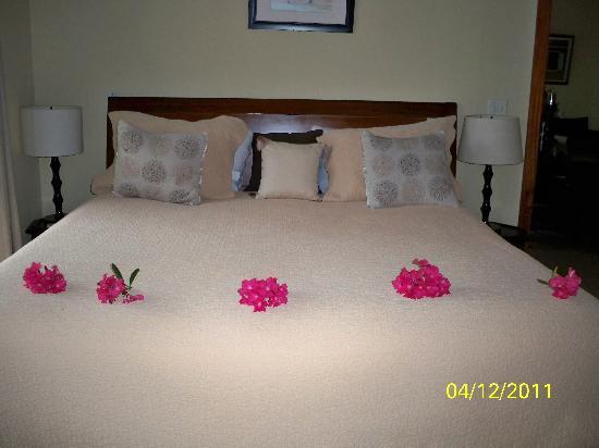 Meads Bay Beach Villas: Delta left my wife flowers