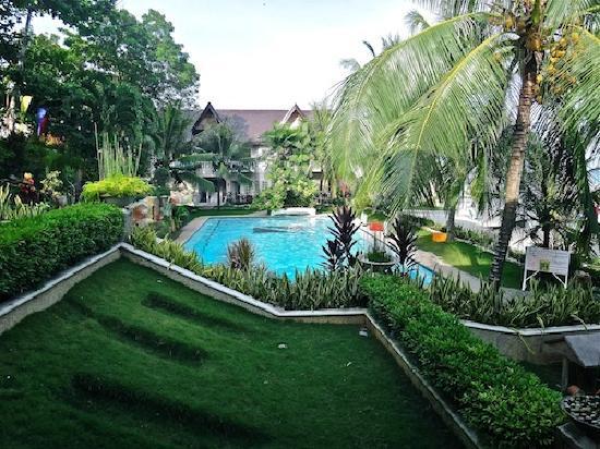 Bohol Divers Resort: the hotel pool...