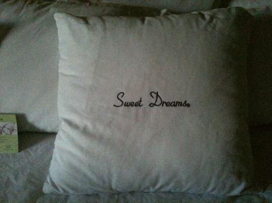 Doubletree by Hilton Tucson - Reid Park: A pillow