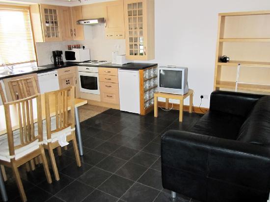 Dalmacia Hotel: Loftus road apartment - kitchen / living room