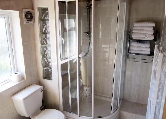 Dalmacia Hotel: Loftus road apartment - bathroom