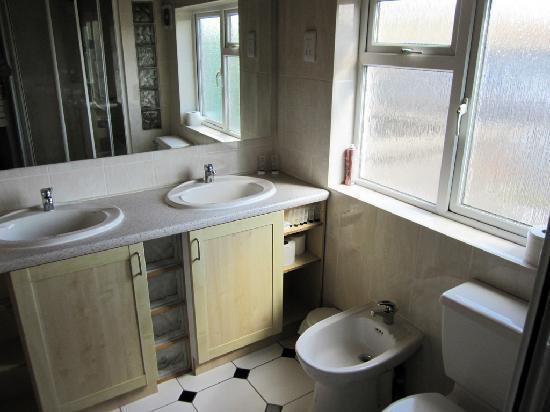 Dalmacia Hotel: Loftus road apartment - bathroom (another view)