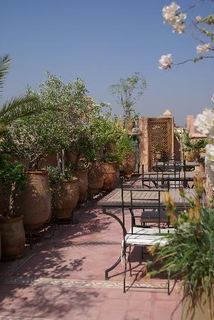 Riad Dar Dialkoum: terrasse