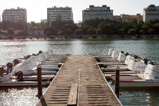 Residencia Deportistas La Cartuja : Estamos junto al río