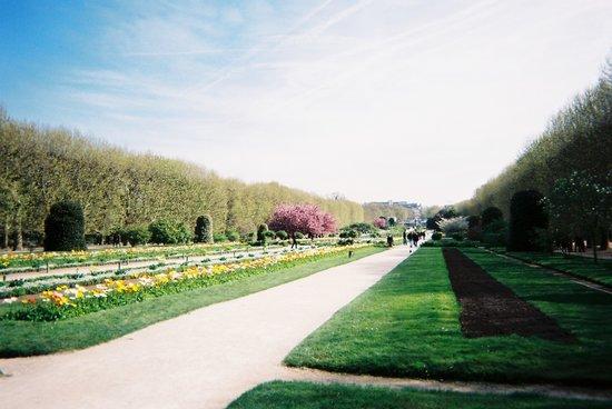 Menagerie du Jardin des Plantes: 公園