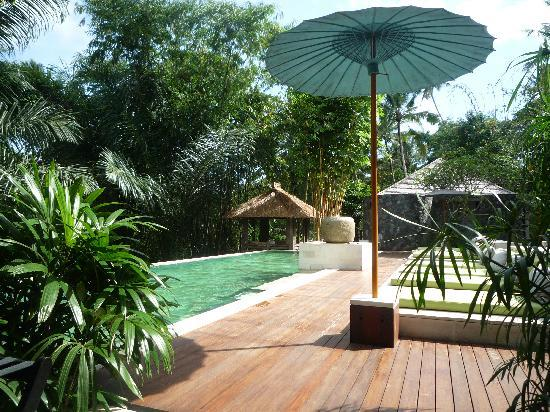 The Purist Villas and Spa: Pool area