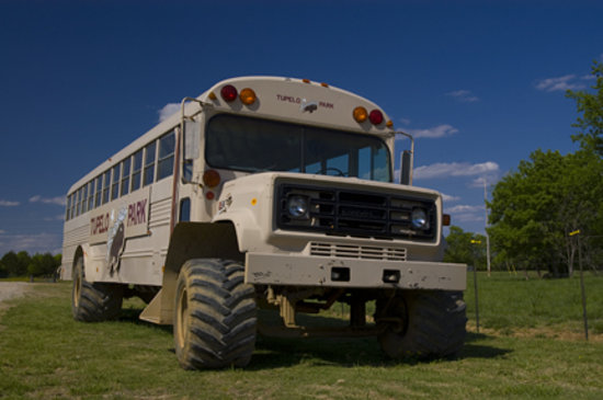 Tupelo, MS: take a tour on our bison bus